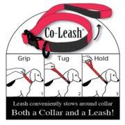 Coleash Tag