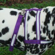 purple-silver-3m